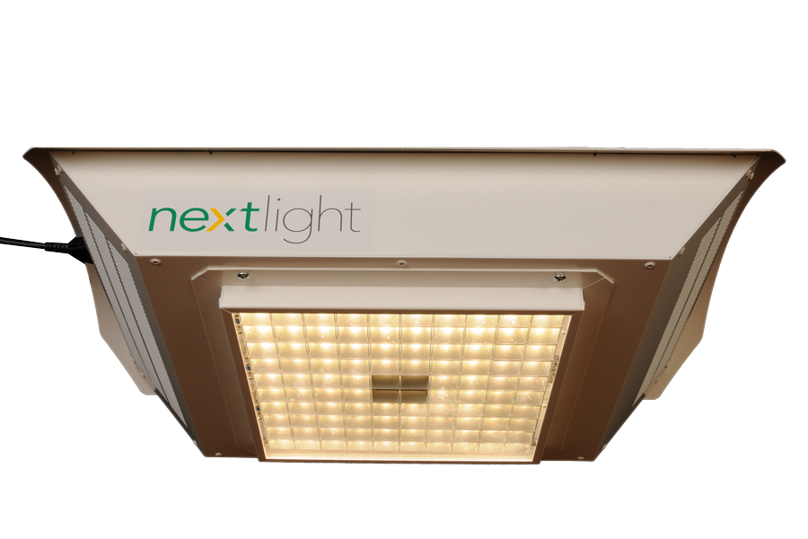 nextlight-lit-up